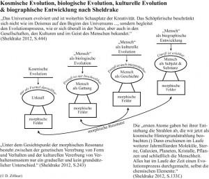 Entwicklungslogiken2 und kosmische Evolution 2